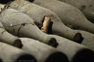 Archivace vína