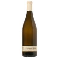 Sauvignon 2013 pozdní sběr
