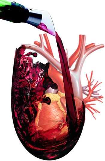 Víno a zdraví člověka