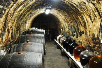 vinařství Mezi sklepy Čejkovice