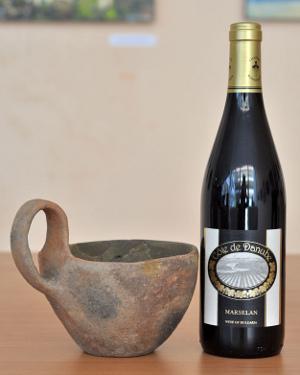 Burgozone - bulharské vinařství